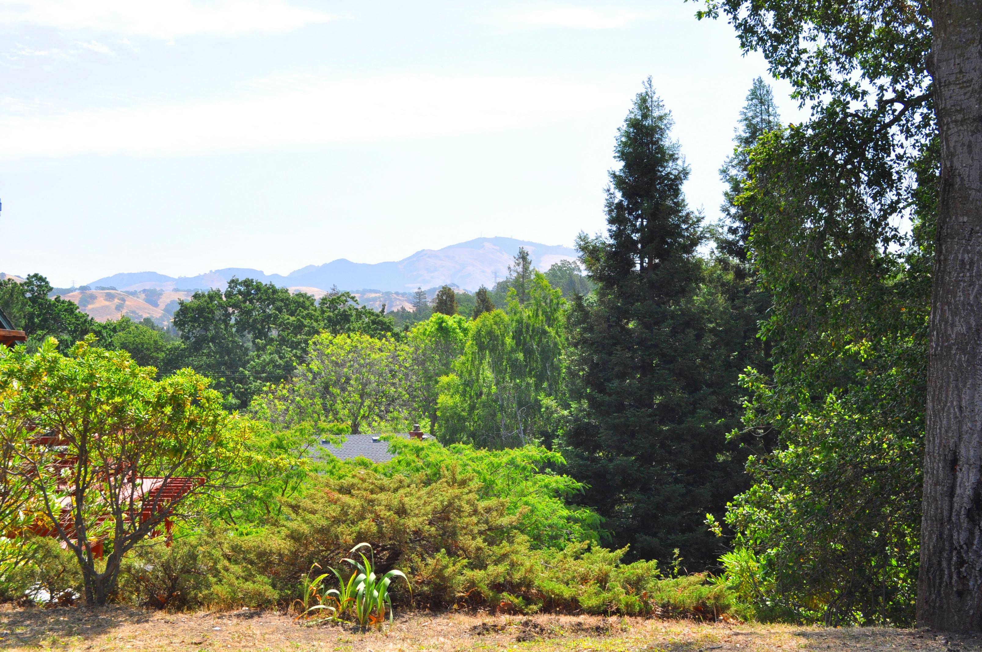 Just Listed: 631 W. Hawthorne Dr, Walnut Creek CA