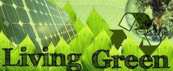 Reaping the Benefits of Green Living