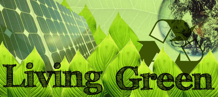 Reaping the benefits of green living homefolio for Greenliving com